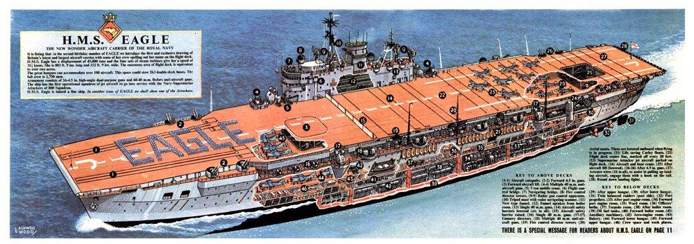 Eagle-cutaway